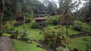 Pacuare River Lodge, Лоджи  Bajo Tigre - big - 22
