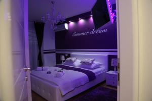Apartment Summer Dream