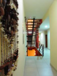 Palau Amazonas Hotel, Szállodák  Iquitos - big - 71