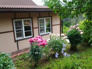 Cottage in Novye Eltsy