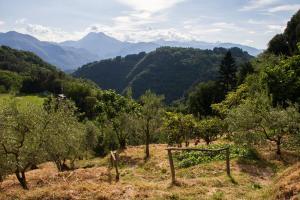 Lucca Country Rentals, Penzióny  Coreglia Antelminelli - big - 32