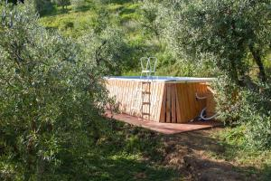 Lucca Country Rentals, Penzióny  Coreglia Antelminelli - big - 33