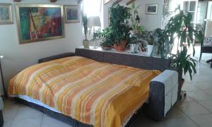 Apartment Varina, Apartments  Dubrovnik - big - 13