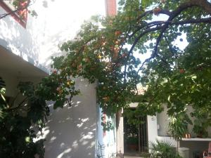 Guest House Goa Mostar - фото 19