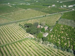 Masseria Brica Rossa