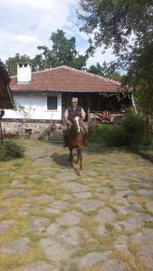 Donkovski Han