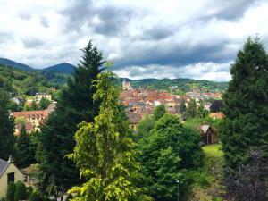 Wohnen im Park, Ferienwohnungen  Gernsbach - big - 15