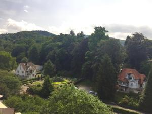 Wohnen im Park, Ferienwohnungen  Gernsbach - big - 20