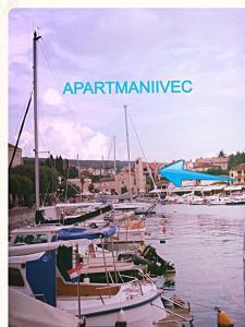 Apartments Ivec