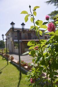 B&B Villa Sole dell'Etna