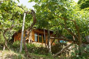 Lucca Country Rentals, Penzióny  Coreglia Antelminelli - big - 14