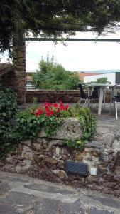 Casa da Quinta De S. Martinho, Penziony  Vila Real - big - 50