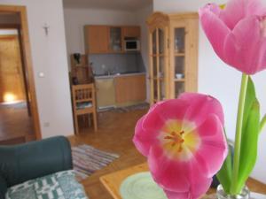 Weingut Dietl, Apartmány  Riegersburg - big - 11