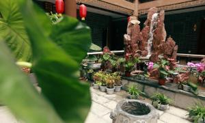 Sunshine Nali Boutique Inn, Гостевые дома  Kaifeng - big - 29