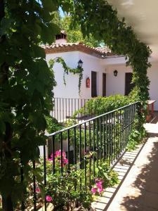 Apartamento Rural Las Palmeras