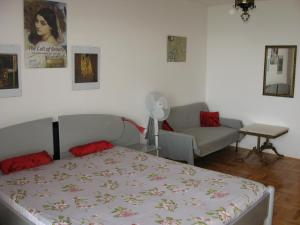 Apartments Sopaljska 24a, Апартаменты  Цриквеница - big - 6
