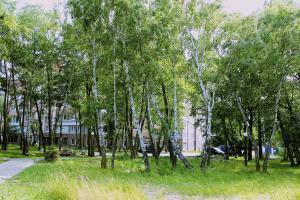 Апартаменты На Комсомольской 7