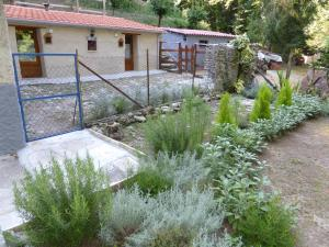 La Casina nel Bosco, Bed & Breakfasts  Azzano - big - 13