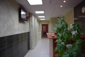 Мини-гостиница Уютная - фото 15