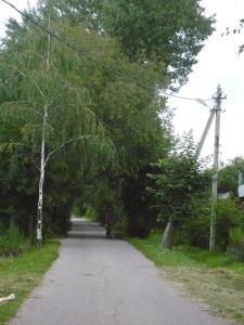 Гостевой дом Домодедово - фото 17