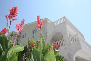 Apartments Dalmatinka - фото 16
