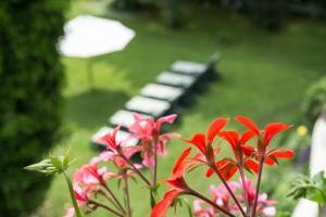 Garden-Hotel Reinhart, Отели  Прин-ам-Кимзее - big - 28