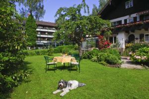 Garden-Hotel Reinhart, Отели  Прин-ам-Кимзее - big - 37