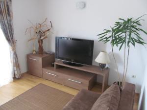 Apartment Danese Promajna