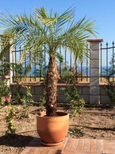 Villa Bellerose, Holiday homes  Bozhurets - big - 53
