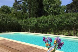 Chateau Pech-Céleyran, Bed & Breakfasts  Salles-d'Aude - big - 44