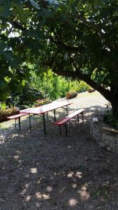 Casa delle Noci, Дома для отпуска  Grimacco - big - 19