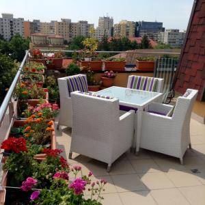 Penthouse City Centre - Apartment - Iaşi