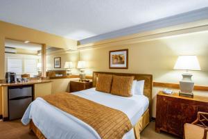 Equus Hotel