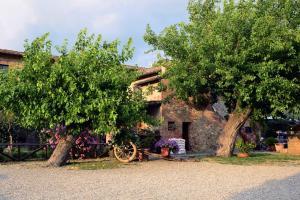 Casa Di Campagna In Toscana, Загородные дома  Совичилле - big - 119