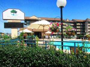 Arbors at Island Landing Hotel & Suites, Hotels  Pigeon Forge - big - 90