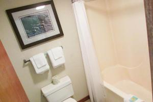 Arbors at Island Landing Hotel & Suites, Hotels  Pigeon Forge - big - 9