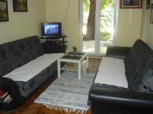 Apartment Maslina