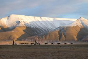 Coal Miners' Cabins, Hostely  Longyearbyen - big - 23