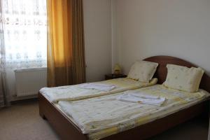 Korina Sky Hotel, Hotely  Bansko - big - 10