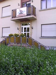 Apartment Sasfészek