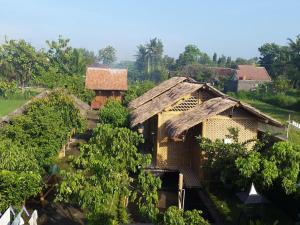 Omah Kecebong, Vendégházak  Yogyakarta - big - 11