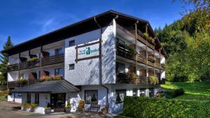 阿尔彭霍夫水疗酒店 (Kur- und Ferienhotel Alpenhof)
