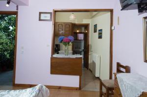 Adilon, Affittacamere  Tsagarada - big - 25