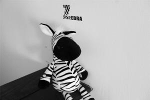 Mr. Zebra Hostel