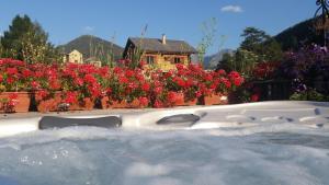 Les Chalets Du Queyras & Spa