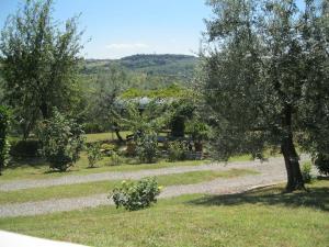 Oliveta, Apartmány  Tavarnelle in Val di Pesa - big - 31