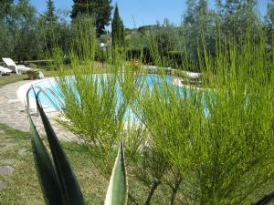 Oliveta, Apartmány  Tavarnelle in Val di Pesa - big - 30
