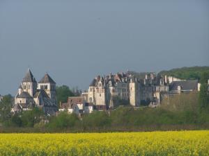Gite Nuance, Dovolenkové domy  Saint-Aignan - big - 10