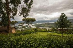 Arcadia Cottage Lake Bunyonyi