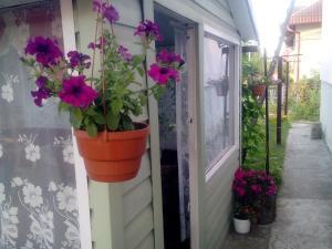 Гостевой дом На Лучинского - фото 7